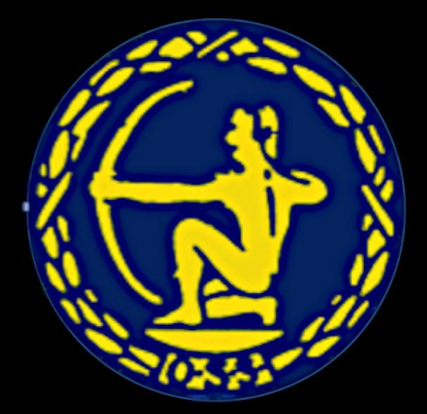 Årsberetning OSS 2016